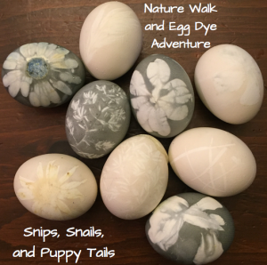 Nature Hike and Egg Dye Adventure